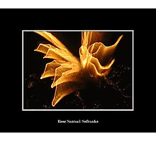 Fireworks: Angel in the sky Photographic Print