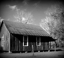 Carrabelle One Room Schoolhouse, Greenville, FL by Debbie Robbins