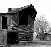 Slaughter Pen Farm, Fredericksburg, Virginia by Stephen Graham