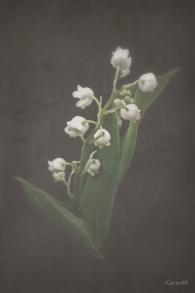 Lily of the Valley by Karen Martin