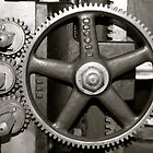 Gears by Joy Fitzhorn