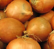 Onions by Carolyn Boyden