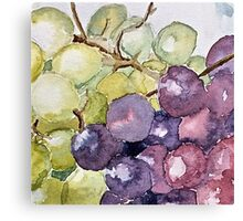 Purple and green grapes Canvas Print