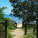 Pathway to the beach by Alison Murphy