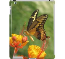 Giant Swallowtail Butterfly on Red Bird of Paradise Bloom iPad Case/Skin