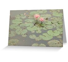 Happy pair of water lilies enjoying a beautiful sunny day Greeting Card