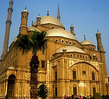 Saladin Citadel - Cairo by Marilyn Harris