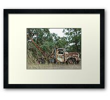 Old crane, The Northern Road Londonderry Framed Print
