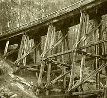 Trestle Bridge - Noojee by Dirk Michael Dudat