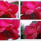 Easter Ingredient by Lozzar Flowers & Art