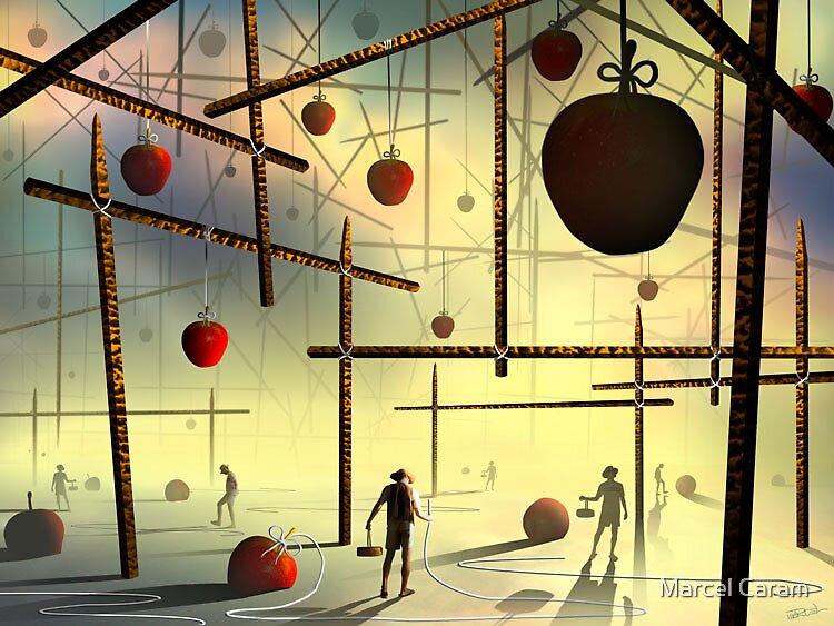 Macieiras by Marcel Caram
