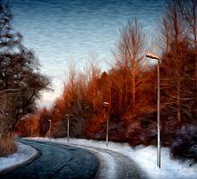 The road by Paul Davis