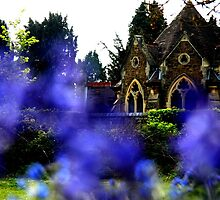 Bluebell church yard by Penny V-P