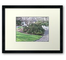 The Beauty of the Spring View to the Poolhouse Framed Print