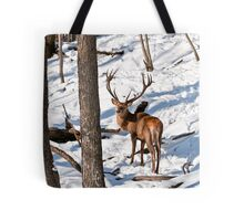 Red Deer in Forest Tote Bag