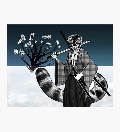 Snow Leopard Samurai Photographic Print