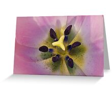 THE INSIDE A BUMBLE BEES VIEW Greeting Card