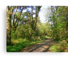 A Bridge Too Far in Upton Woods Canvas Print