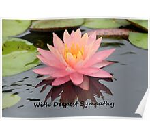 Greeting Card Sympathy Water Lily Poster