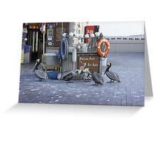 Pelican Food Greeting Card