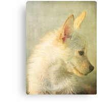 We Miss You Cooper Canvas Print