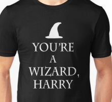 You're a wizard harry - keep calm spoof Unisex T-Shirt