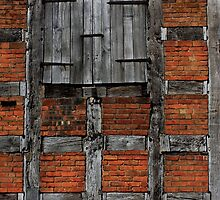 Centuries-Old Barn by avocet
