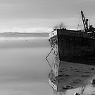 The Final Voyage, The Portlairge, Saltmills, County Wexford, Ireland by Andrew Jones