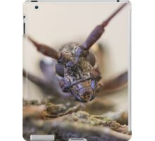 Color - Insect Close Up iPad Case/Skin
