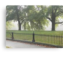 Fence and Trees Canvas Print