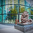 HSBC Bank: Lion by DonDavisUK