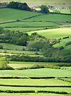 Yorkshire's Beauty #2 by Graham Geldard