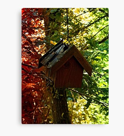Abandoned old bird box in the forest Canvas Print