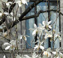 Metropolitian Blooms - New York City by Marijane  Moyer