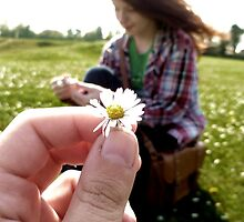 A Daisy For You by Vicki Spindler (VHS Photography)