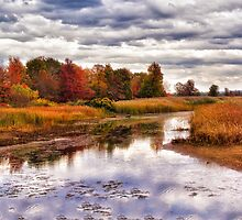 Autumn in the Lagoons by Kathy Weaver