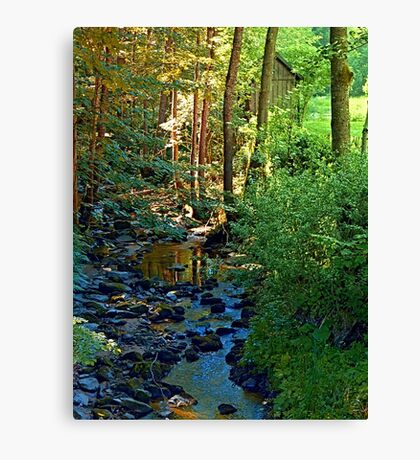 Forest, a river, a valley and summertime Canvas Print