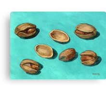 stash of pistachios Canvas Print