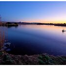 RSPB Lodmoor nature reserve - morning light by Pete Vincent