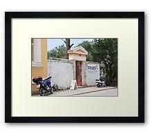 PAWS clinic, Paxos island Framed Print
