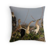 Anhinga Nestlings Throw Pillow