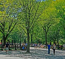 A Walk In Central Park by GW-FotoWerx