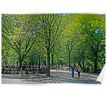 A Walk In Central Park Poster