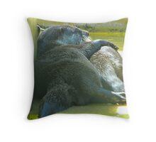 Otter Romance Throw Pillow