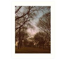 Washington Park   Art Print