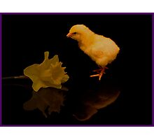 Reflected Easter Chick Photographic Print