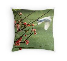 Japanese Gardens - Buenos Aires Throw Pillow