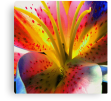 Outlandish Lilly Canvas Print