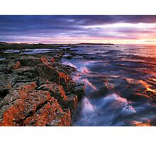 Spring Light - Moray Photographic Print