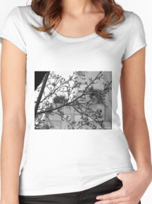 Autumn in Buenos Aires Women's Fitted Scoop T-Shirt